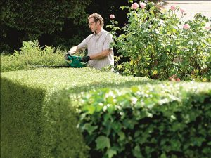 Finding the Best Hedge Trimmer