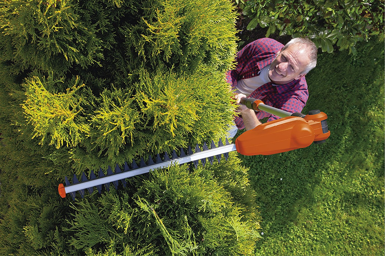 Best Long Reach Hedge Trimmer Reviews