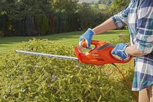 Using an Electric Hedge Trimmer